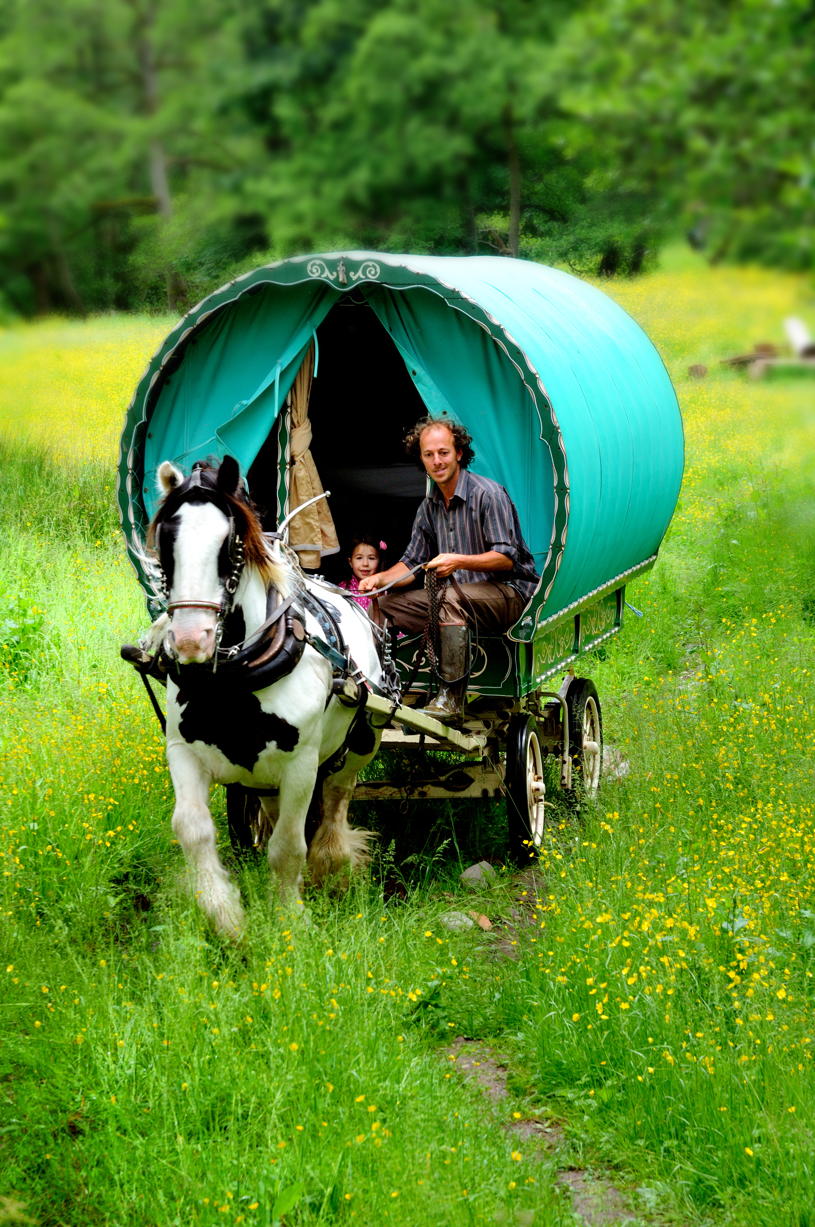 Wanderlusts Gypsy Caravans
