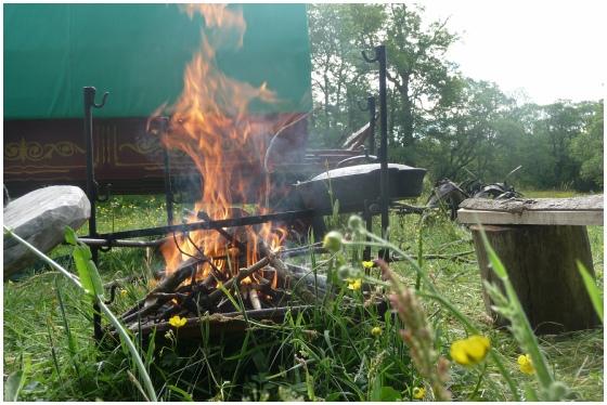 Wanderlusts Fire Irons