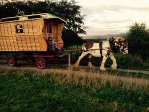 Katus and Madog on the road with our new wagon and Meg the new horse